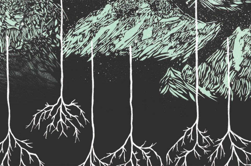 Bilan de l'album Le sens du vent 2017 de Raton Lover